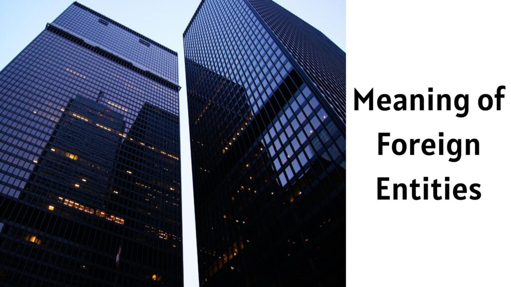 Meaning of Foreign Entities